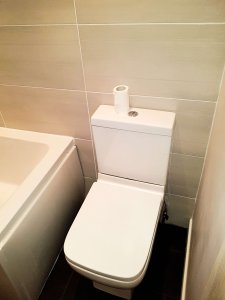 Image showing classic toilet